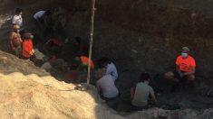 Excavación de Torrelara este verano. (Foto: F.G.)