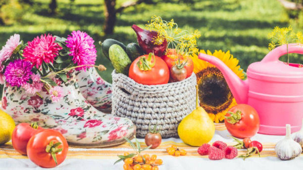 Descubre todas las frutas y verduras que puedes comer y cocinar durante este mes