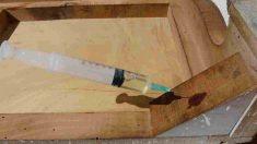 Cómo saber si la madera tiene carcoma