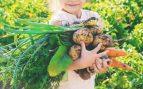 frutas verduras niños verano