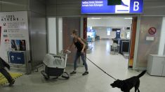 Aeropuerto internacional de Atenas – Aristidis Vafeiadakis/ZUMA Wire/ DPA – Archivo