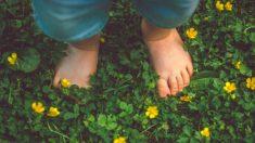Descubre los nombres ecológicos para bebés que son ahora tendencia