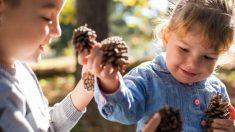 Descubre algunas de las manualidades infantiles que podemos coger con materiales recogidos en el bosque