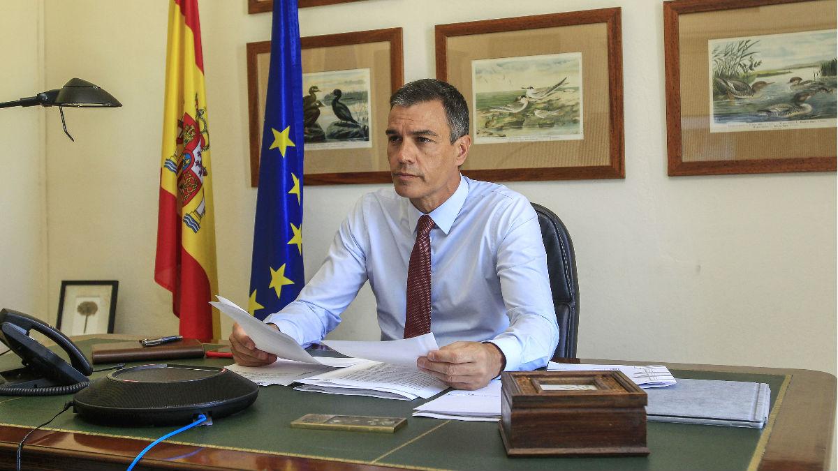 El presidente del Gobierno, Pedro Sánchez, en su despacho de Doñana.