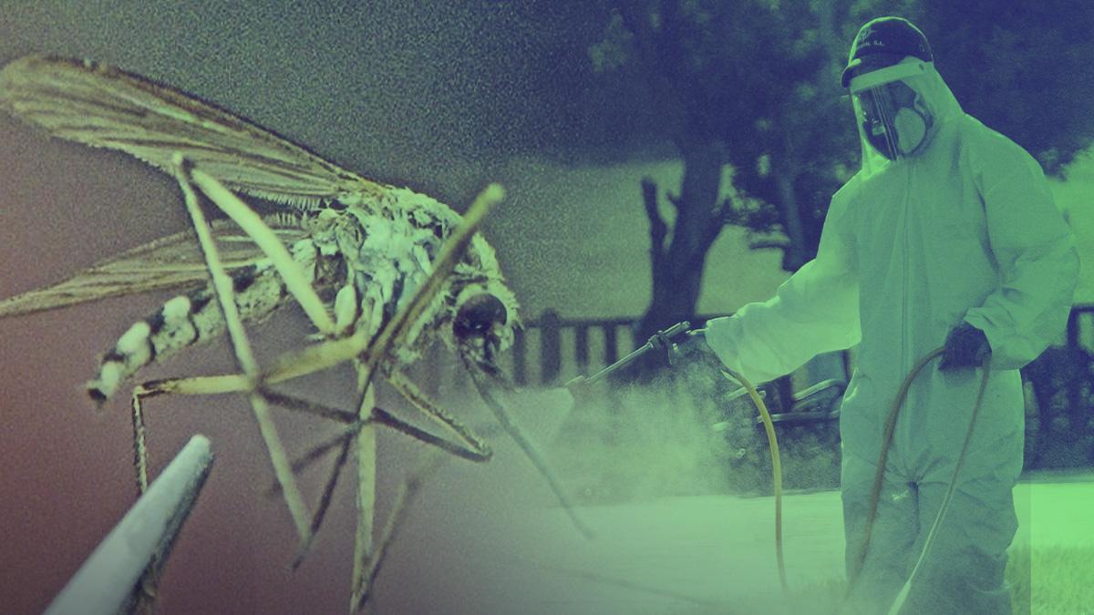 Virus del Nilo.