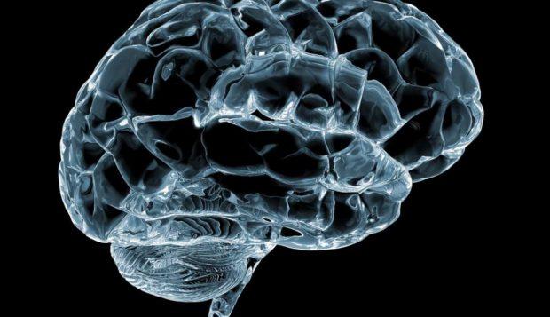 Cerebro y bilingüismo