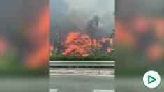 Arde Estepona: las llamas también devoran el Hotel Kempinski y varias tiendas y restaurantes.