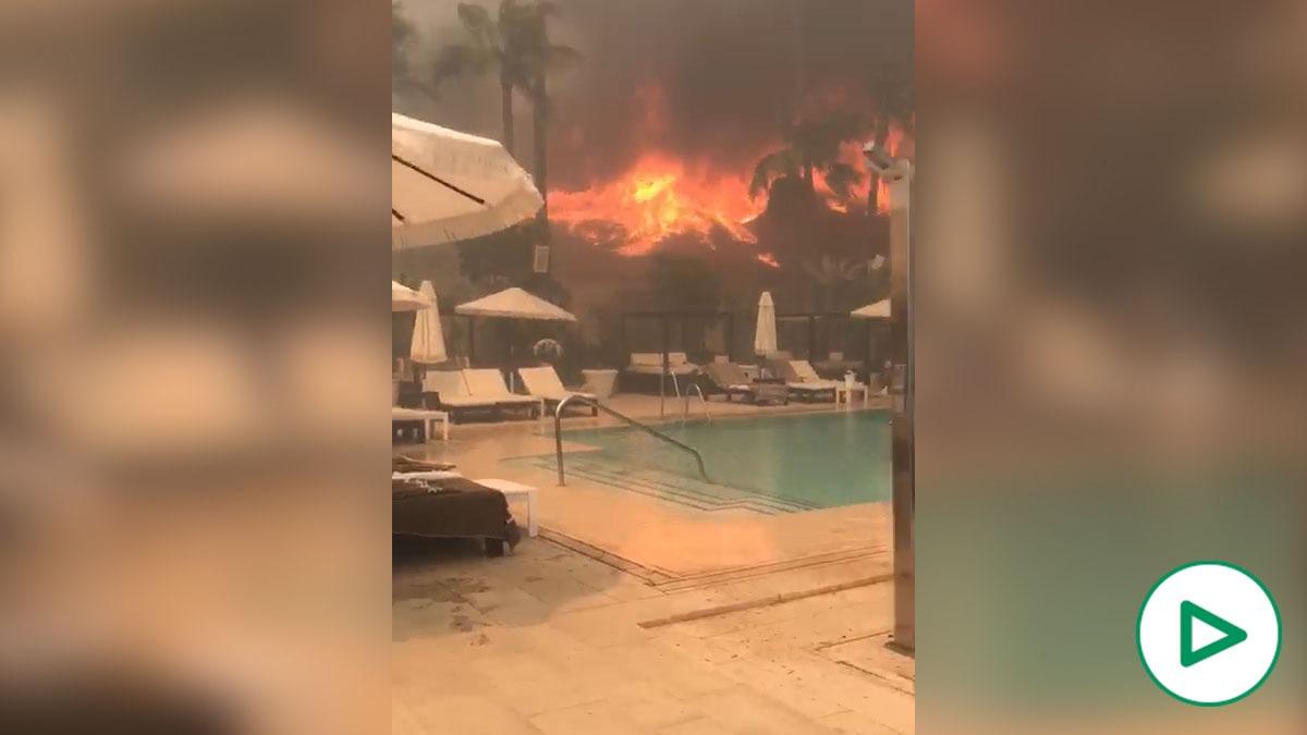 La agónica huida de los clientes de Puro Beach mientras el fuego devora el local.