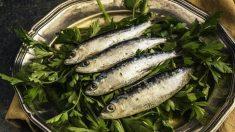 Consumo de pescados azules