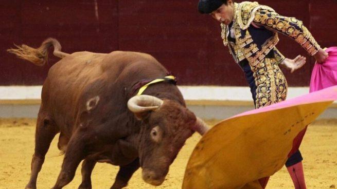 Más Madrid Toros