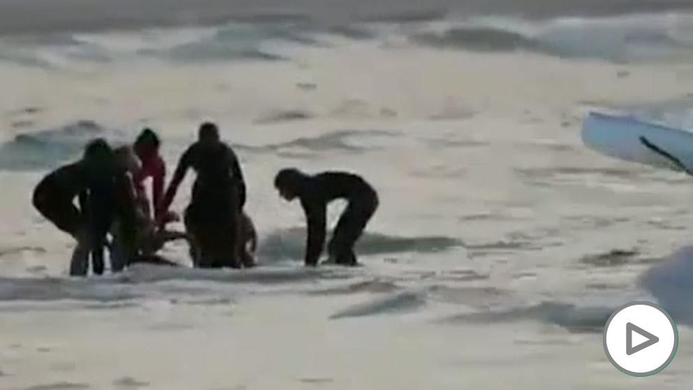 Muere un surfista en Australia por el ataque de un tiburón