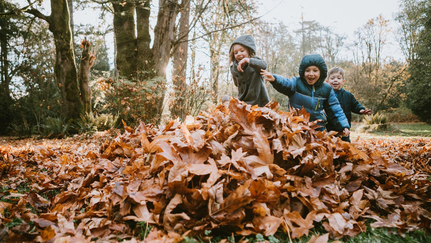 Descubre algunos de los mejores planes que podemos hacer con los niños este otoño