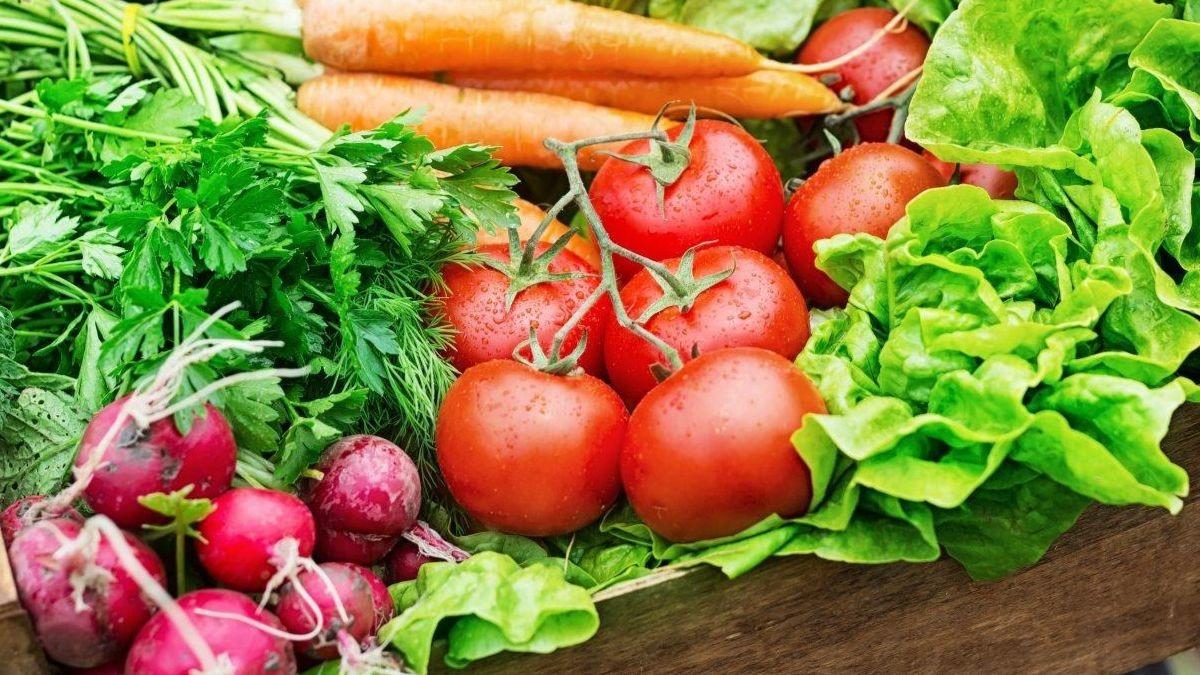 El sector agroalimentario andaluz bate récords de exportaciones.