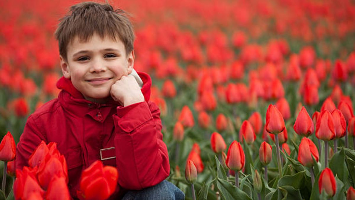 Países Bajos, el mejor país para criar niños