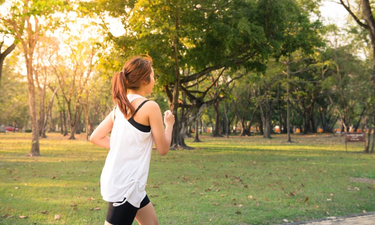 Ritmo cardíaco y la arritmia sinusal