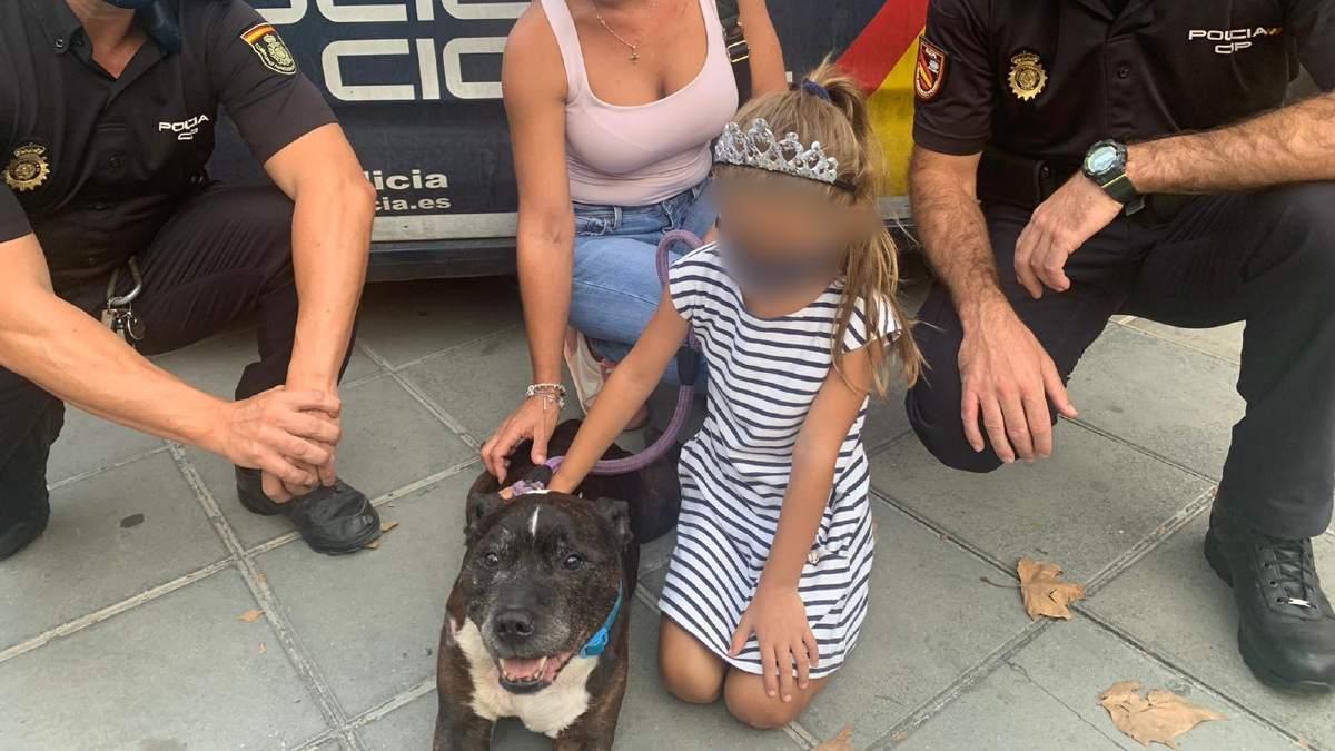 Detenido por arrastrar a un perro con su coche. Foto: EP