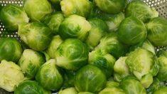 Descubre cuáles son los cinco alimentos más saludables del mundo, según Harvard