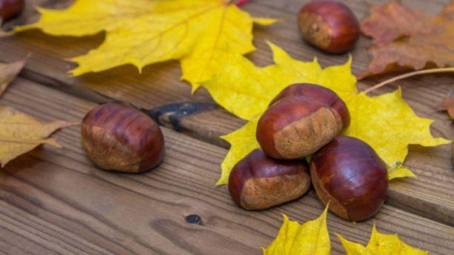 manualidades otoño con castañas