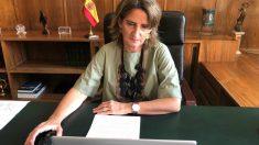 La vicepresidenta cuarta y ministra para la Transición Ecológica y Reto Demográfico, Teresa Ribera, preside una reunnión de la OCDE sobre recuperación económica verde. (MITECO)