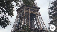 Amenaza de bomba en la Torre Eiffel (14)
