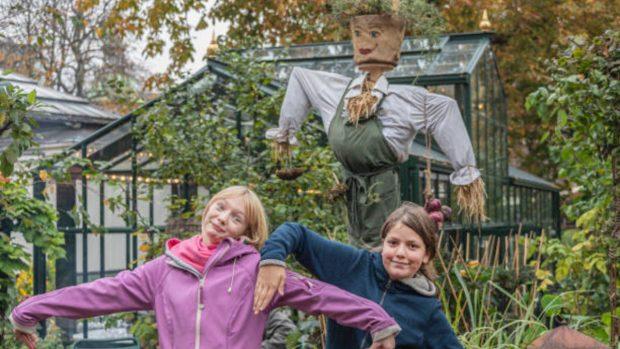 6 formas de divertirse con los niños en otoño (y al aire libre)