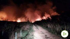 Imagen de uno de los focos del incendio en la Albufera de Alcúdia. (Foto: IBANAT)