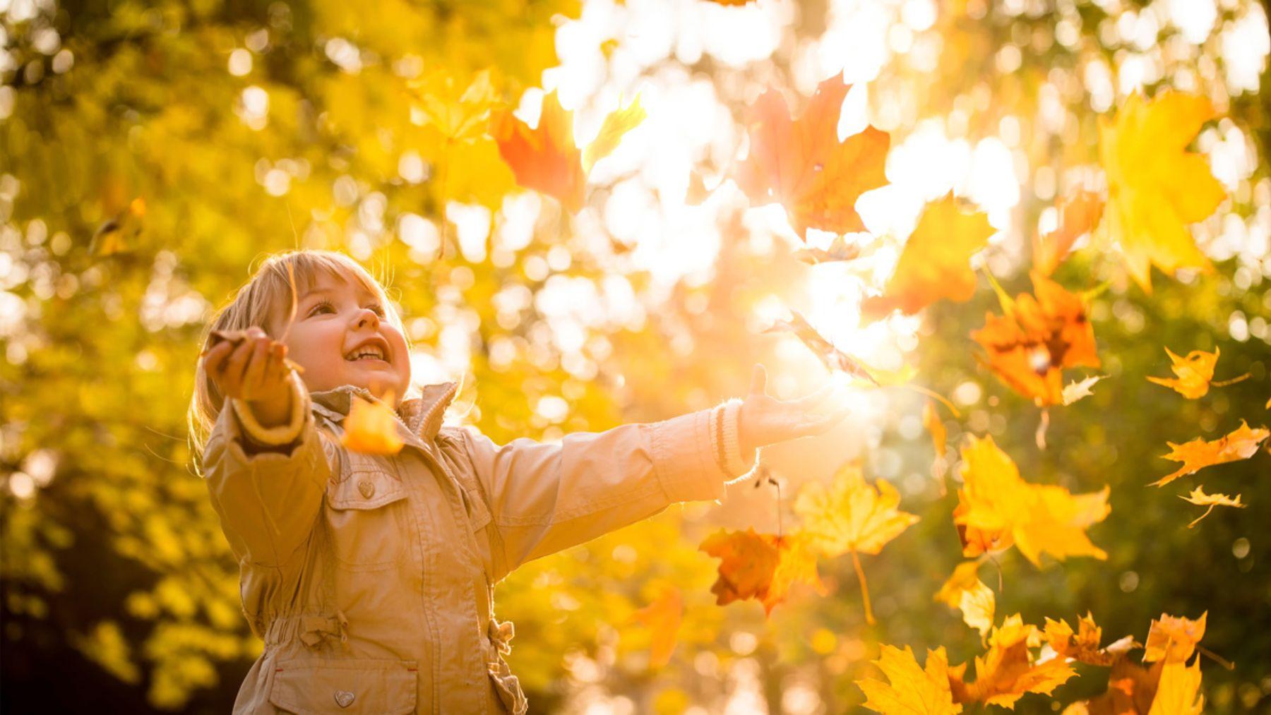 Descubre las mejores frases para celebrar el otoño con los niños