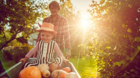 Descubre los mejores alimentos de otoño para la salud de los niños