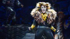 El 7 de octubre de 1982 se estrena Cats en Broadway