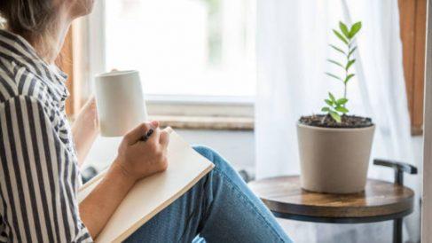Gracias a utilizar un poco de canela podrás revivir tus plantas en el hogar