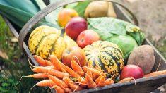 Conoce las frutas y verduras para este mes de octubre