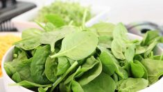 Beneficios de las espinacas crudas