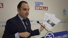 Sevilla.- PP critica la «falsedad política y engaños» de Espadas sobre el proyecto de la Plaza de la Magdalena