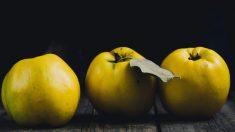 Frutas saludables: el membrillo