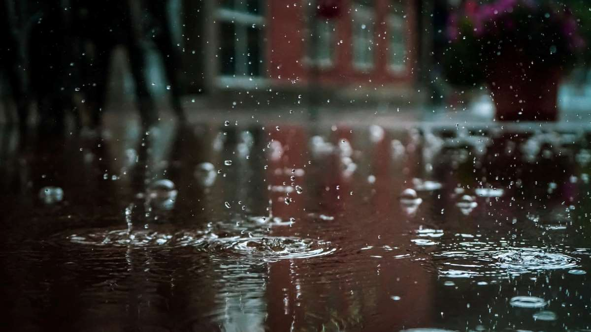 El agua de la lluvia se puede recolectar para diversos usos