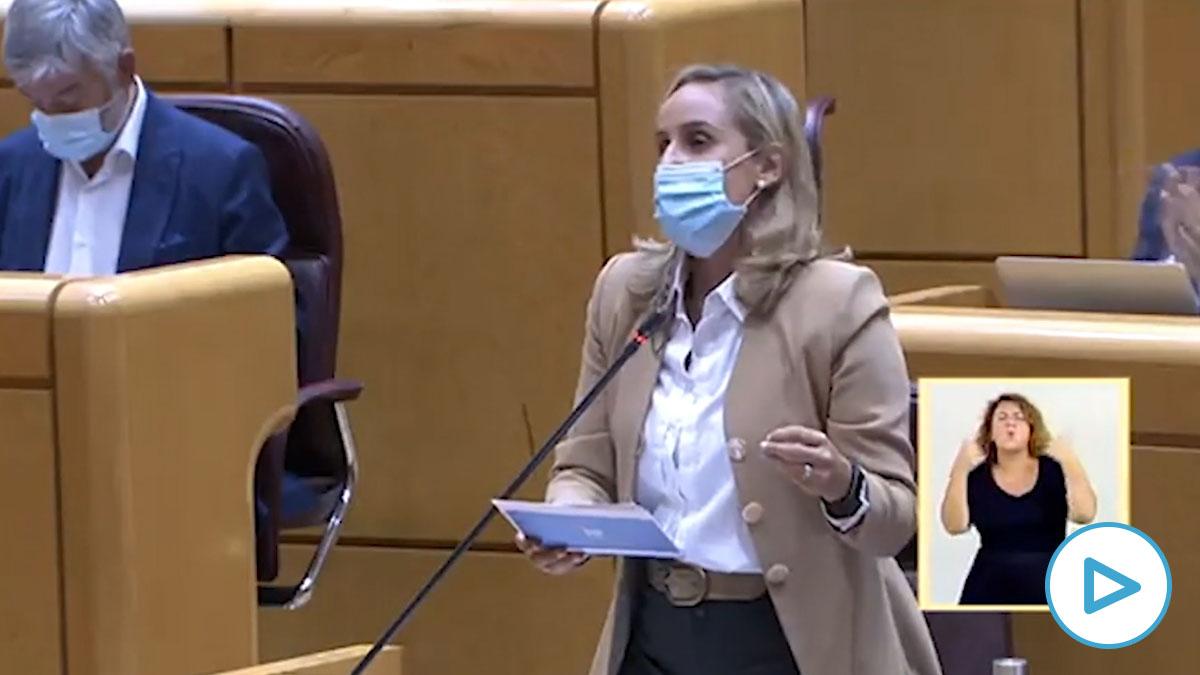 La diputada del Grupo Parlamentario Popular en el Senado, Ana Camís, durante su intervención en el Senado.