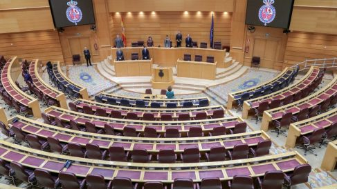 El Senado da luz verde a las tasas 'Tobin' y 'Google' que verán la luz en enero de 2021