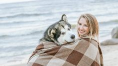 Datos curiosos sobre perros