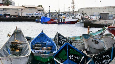 Pateras acumuladas en el Muelle de Arguineguín (Gran Canaria) este 23 de septiembre. (Cedida por el  Ayuntamiento de Mogán-Europa Press)