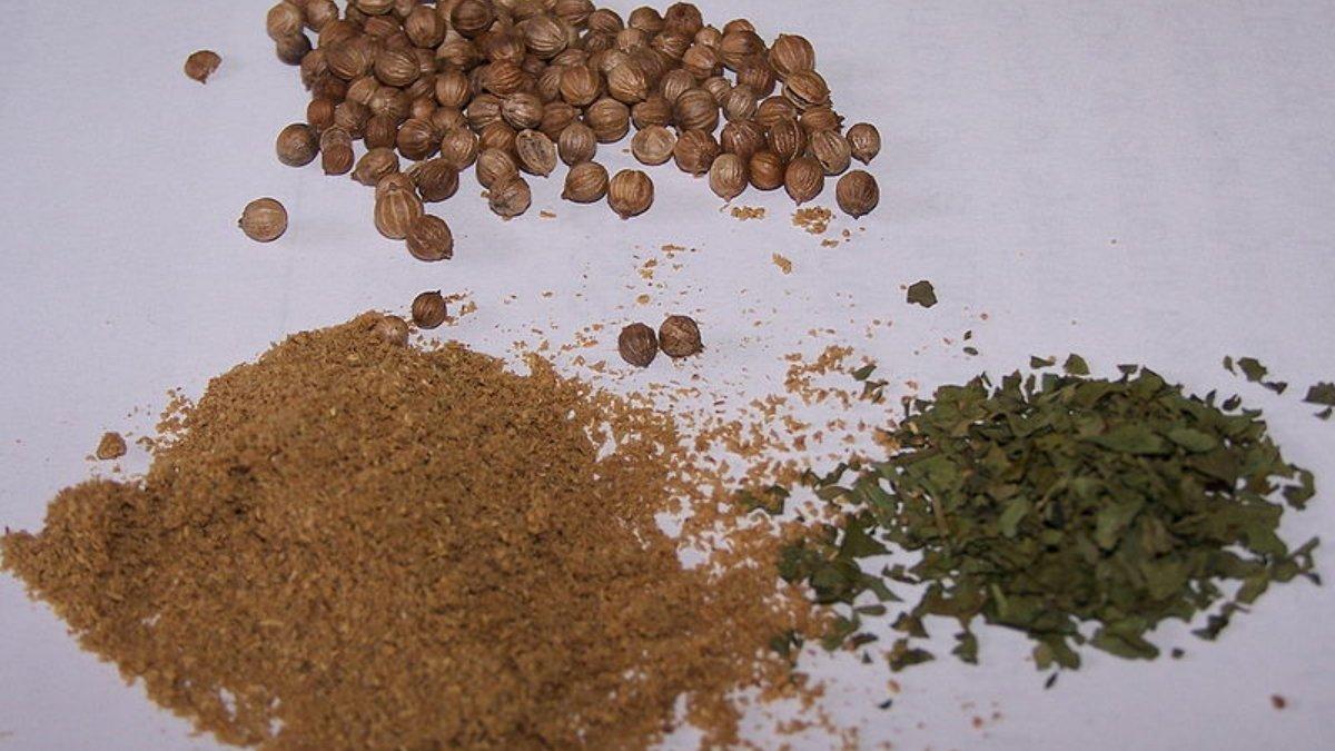 Descubre qué beneficios ofrece el cilantro para la salud