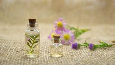 Tus viejos frascos de perfume pueden ser muy útiles para otros usos