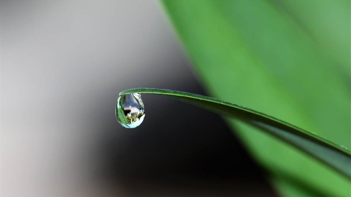 El poder del agua @Istock