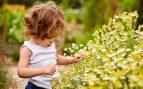 plantas tóxicas bebés niños