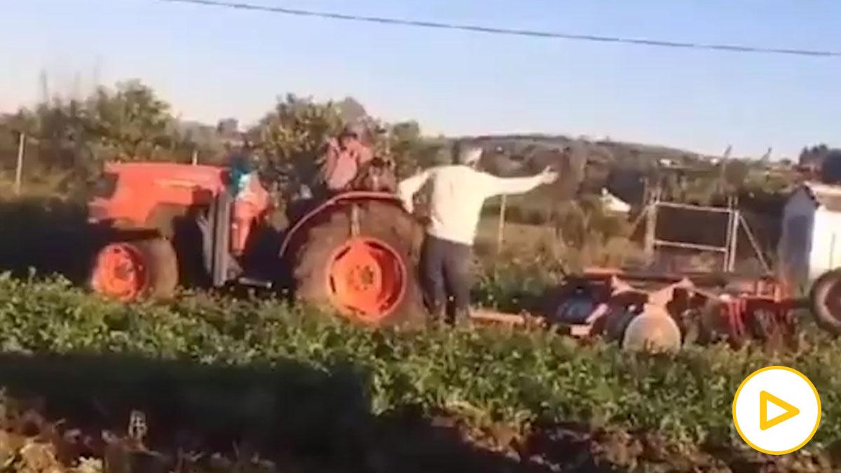 Twitter: Esta es la divertida discusión entre dos agricultores que triunfa en redes.