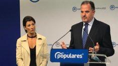 El presidente del PP vasco, Carlos Iturgaiz. Foto: EP