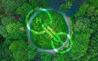 Iberdrola y Naturgy consolidan su posición para el impulso del hidrógeno verde en España