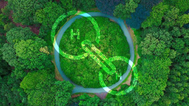 España se consolida como líder mundial en hidrógeno verde