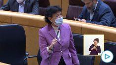Isabel Celaá, en el Senado.