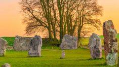 Cementerios naturales y ecología