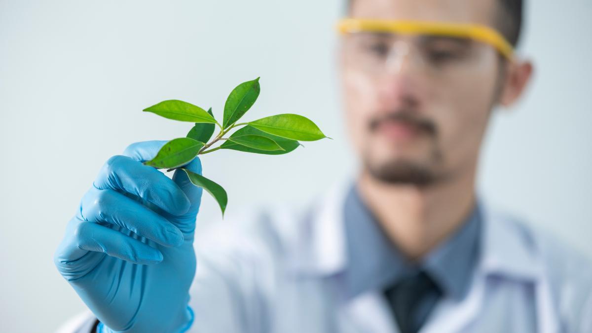 La ciencia y la naturaleza